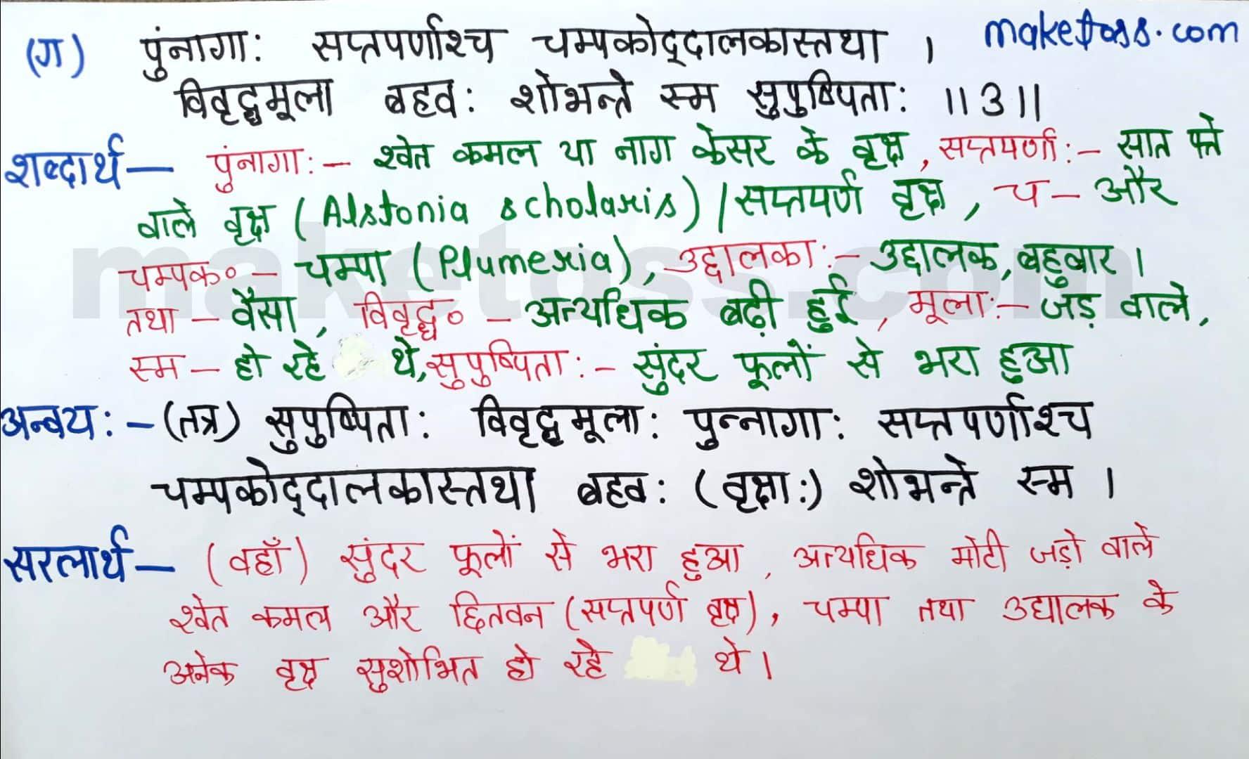 class 8 Sanskrit chapter 10