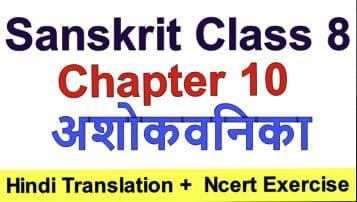 Sanskrit class 8 chapter 10 – अशोकवनिका