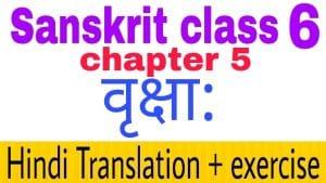 Class 6 Sanskrit chapter 5 - NCERT Exercise solution,Hindi translation,Videos,etc