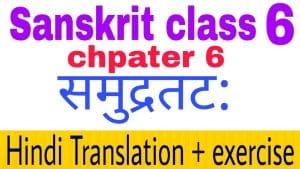Class 6 Sanskrit chapter 6 - NCERT Exercise solution,Hindi translation,Videos,etc