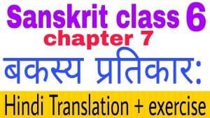 Class 6 Sanskrit chapter 7 - NCERT Exercise solution,Hindi translation,Videos,etc