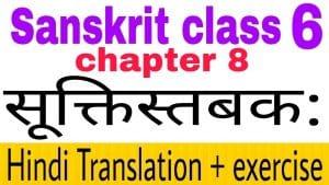 Class 6 Sanskrit chapter 8 - NCERT Exercise solution,Hindi translation,Videos,etc
