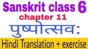 Class 6 Sanskrit chapter 11 - NCERT Exercise solution,Hindi translation,Videos,etc