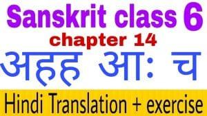 Class 6 Sanskrit chapter 14 - NCERT Exercise solution,Hindi translation,Videos,etc