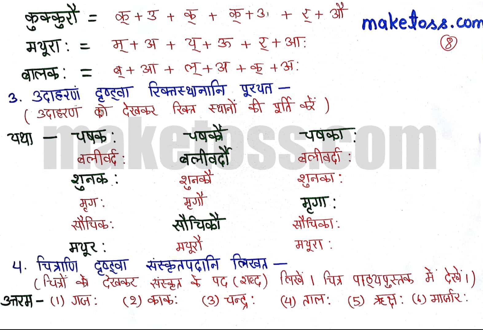 Sanskrit Class 6 chapter 1 - शब्दपरिचय 1 - Ncert solution + translation in Hindi