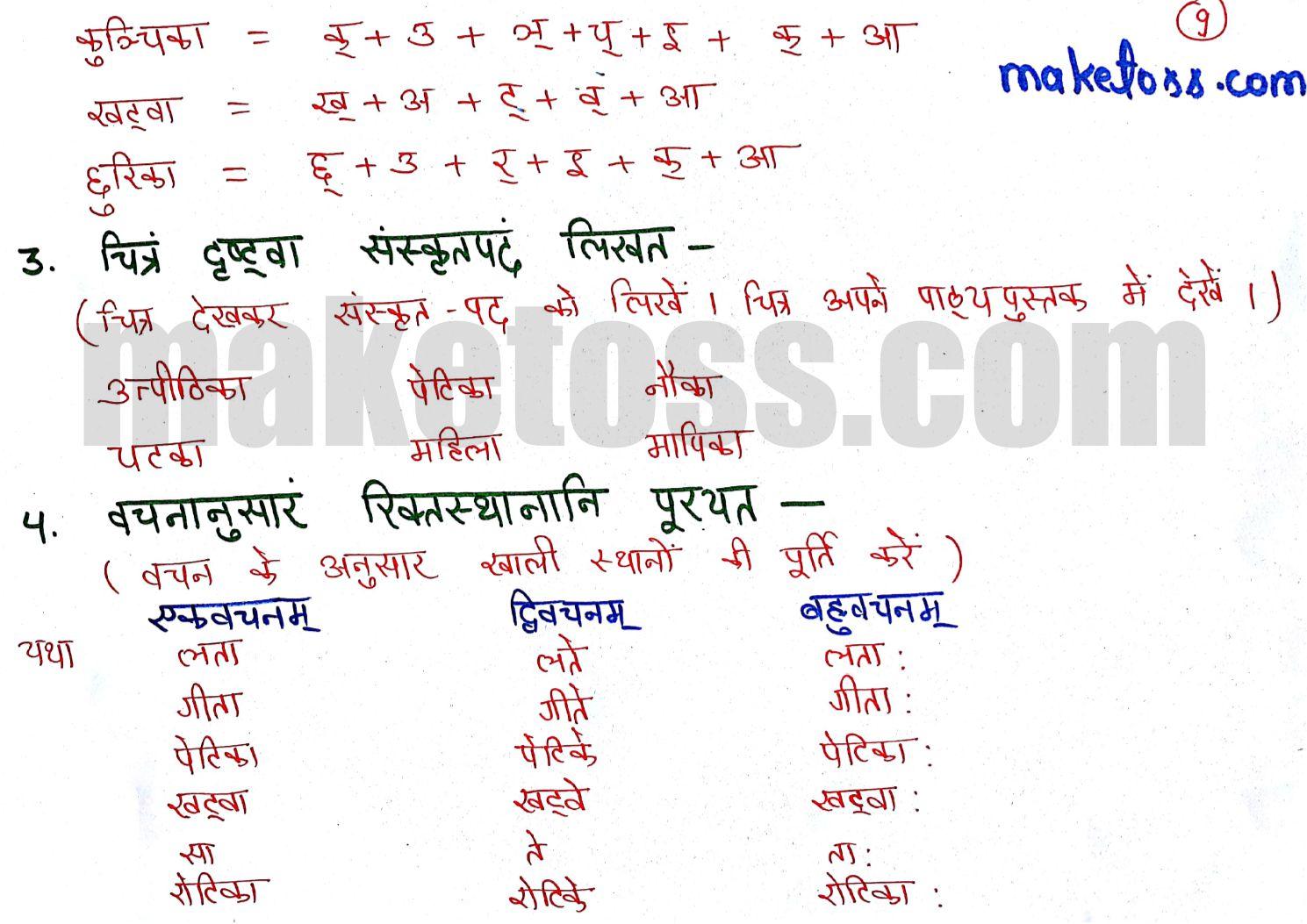 Sanskrit Class 6 chapter 2 - शब्दपरिचय 2 - Ncert solution
