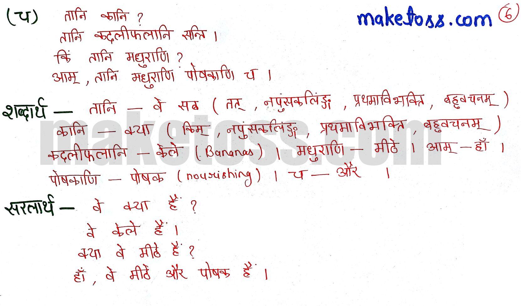 Class 6 Sanskrit chapter 3 - शब्दपरिचय 3 - Ncert solution