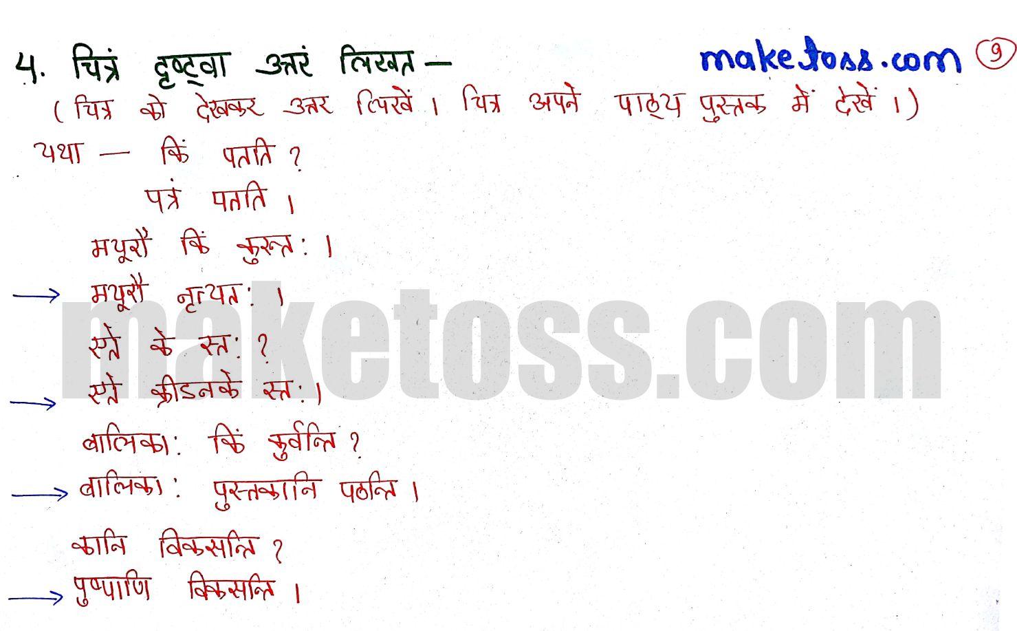 Class 6 Sanskrit chapter 3 - शब्दपरिचय 3