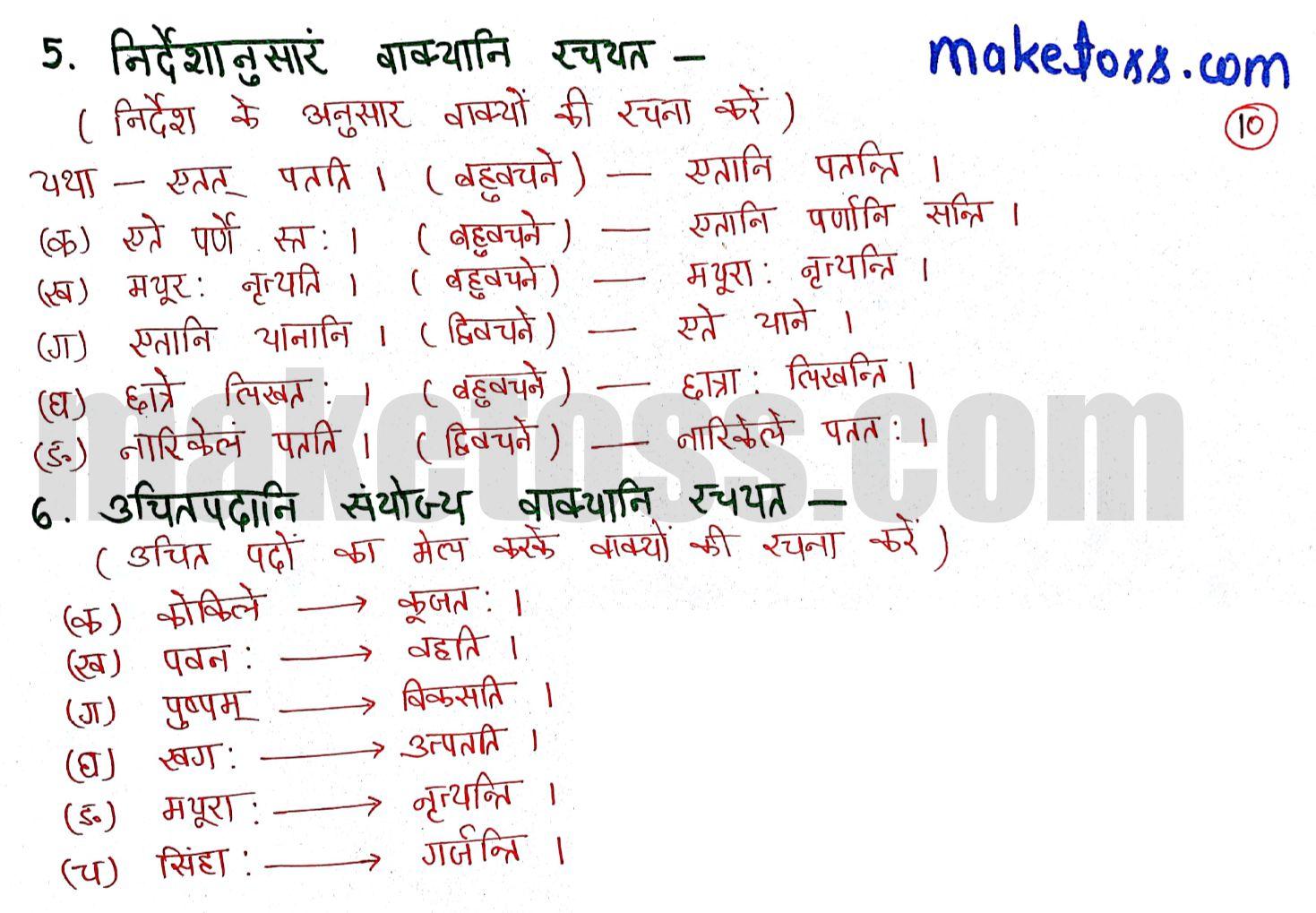 Class 6 Sanskrit chapter 3