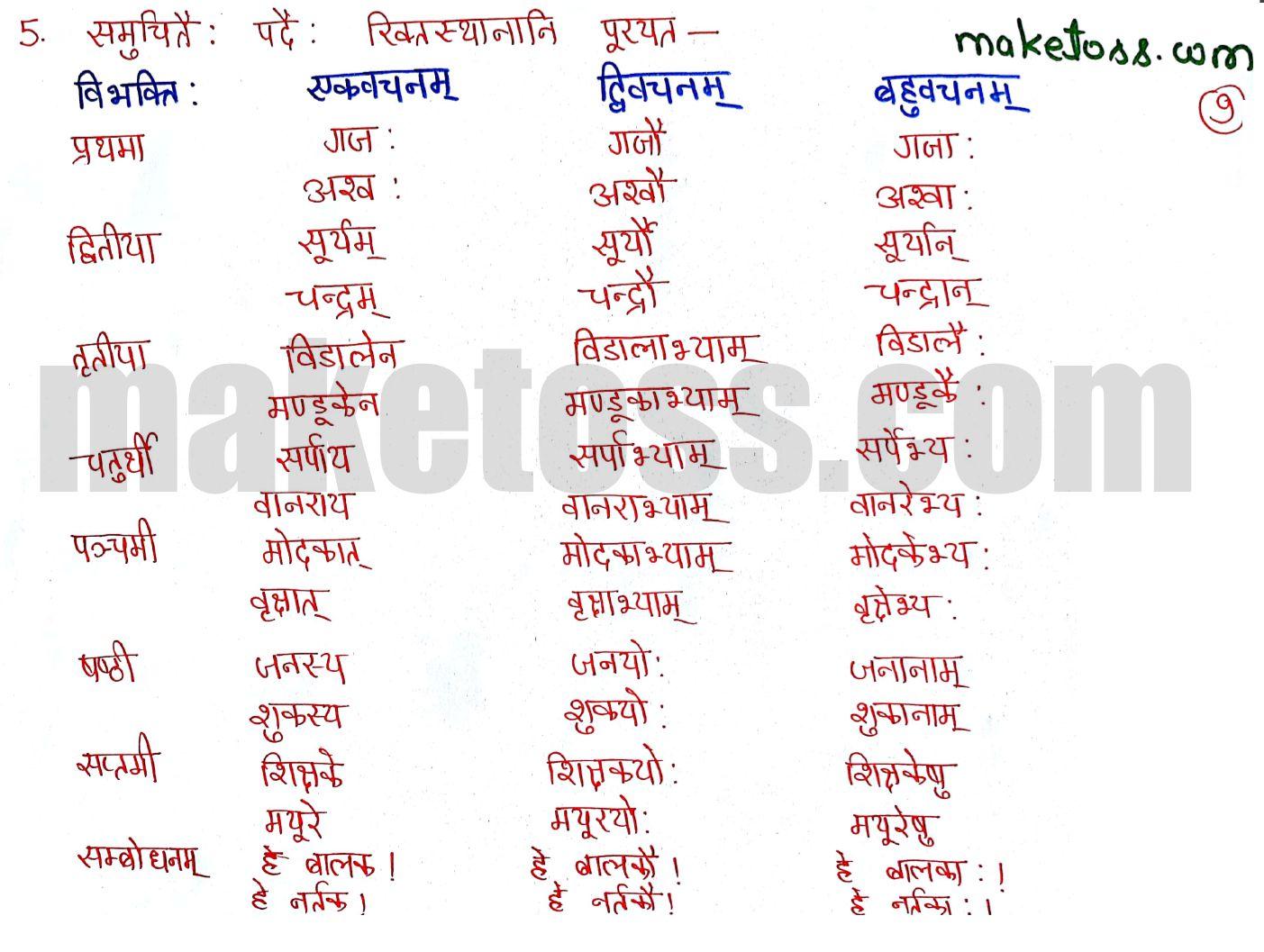 Sanskrit Class 6 chapter 5 ncert solution