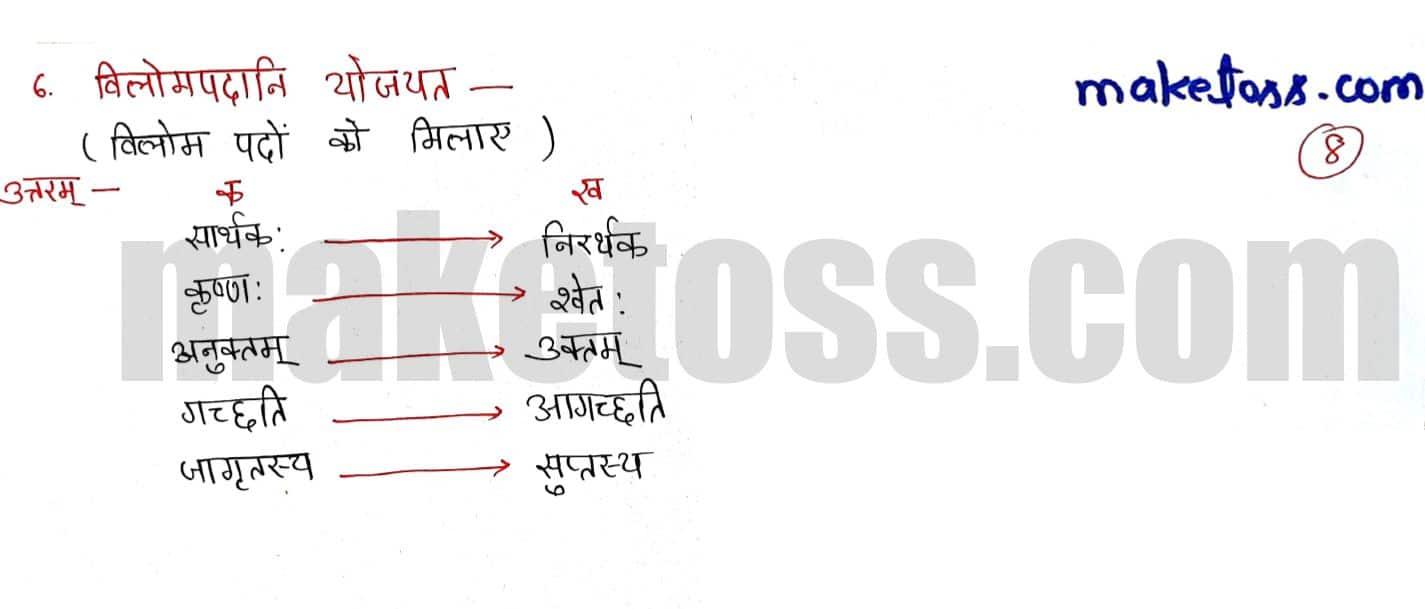 Sanskrit class 6 chapter 8