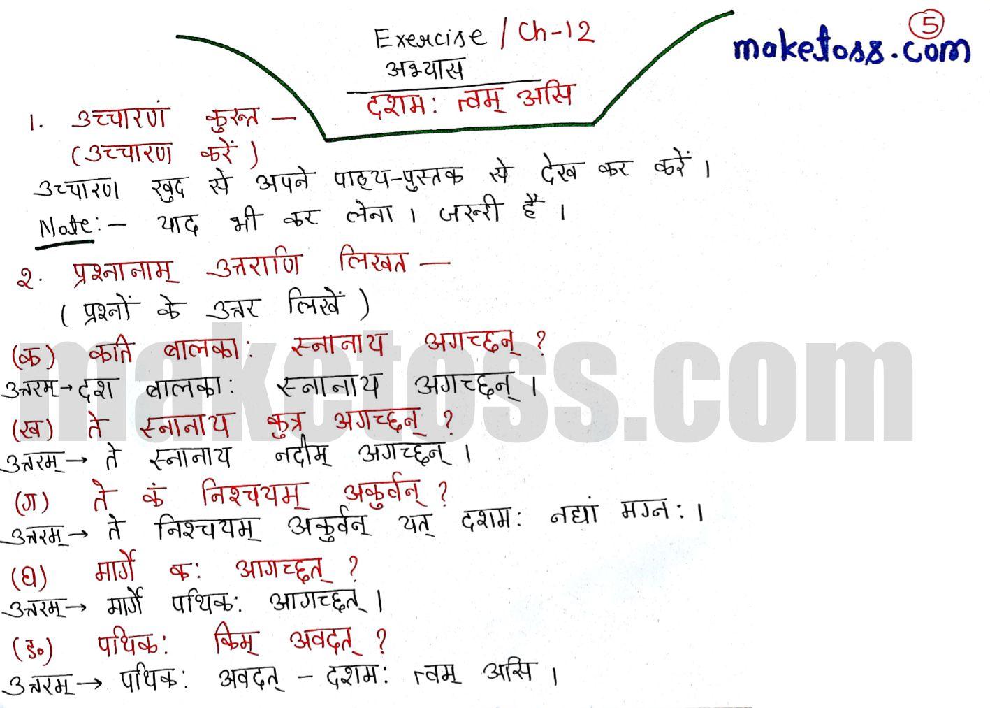 Sanskrit class 6 chapter 12 दशमः त्वम् असि  solution