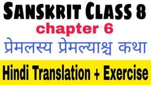 Sanskrit class 8 chapter 6