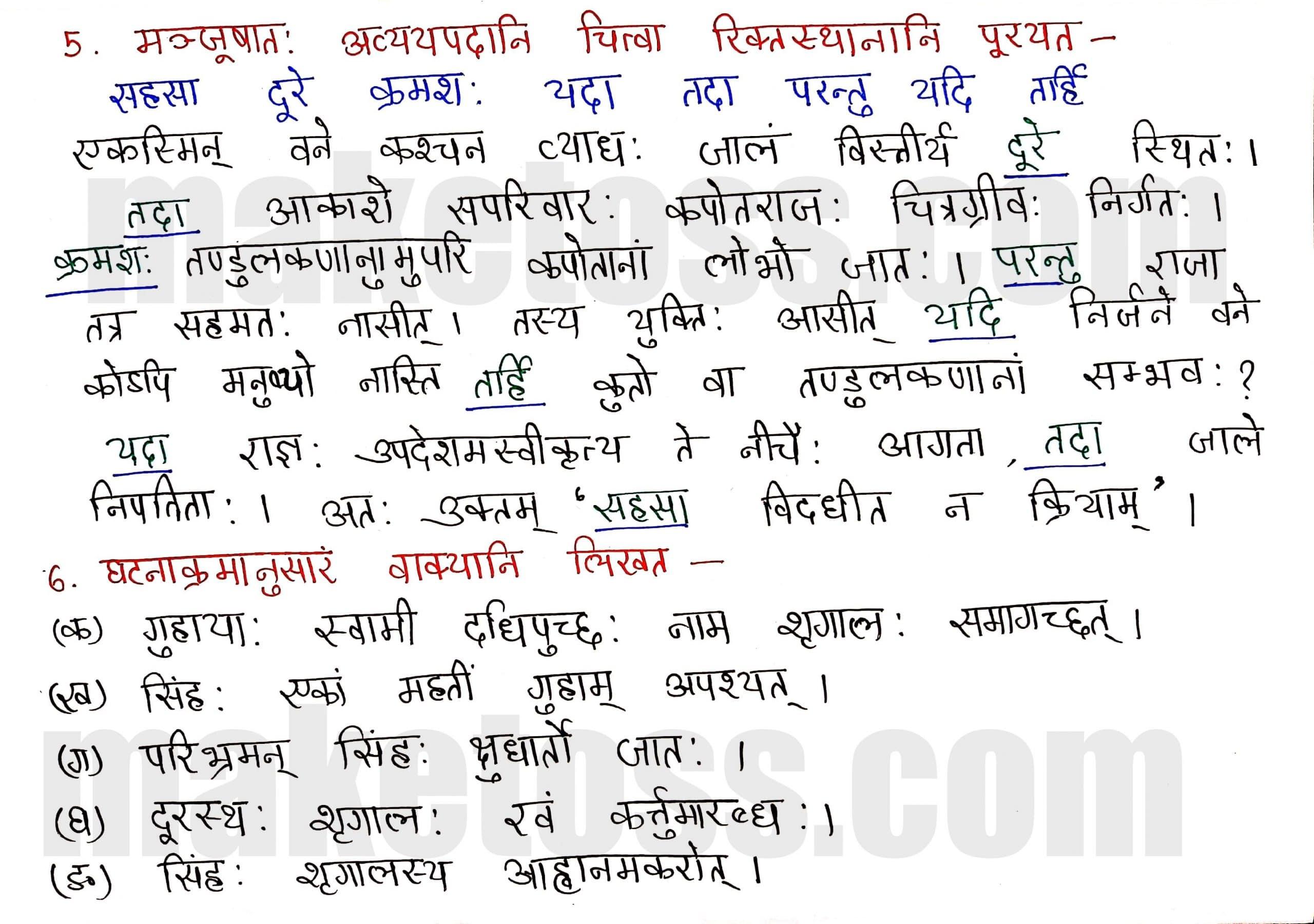 Sanskrit Class 8-Chapter 2-बिलस्य वाणी न कदापि मे श्रुता-Exercise Q.5 & Q.6