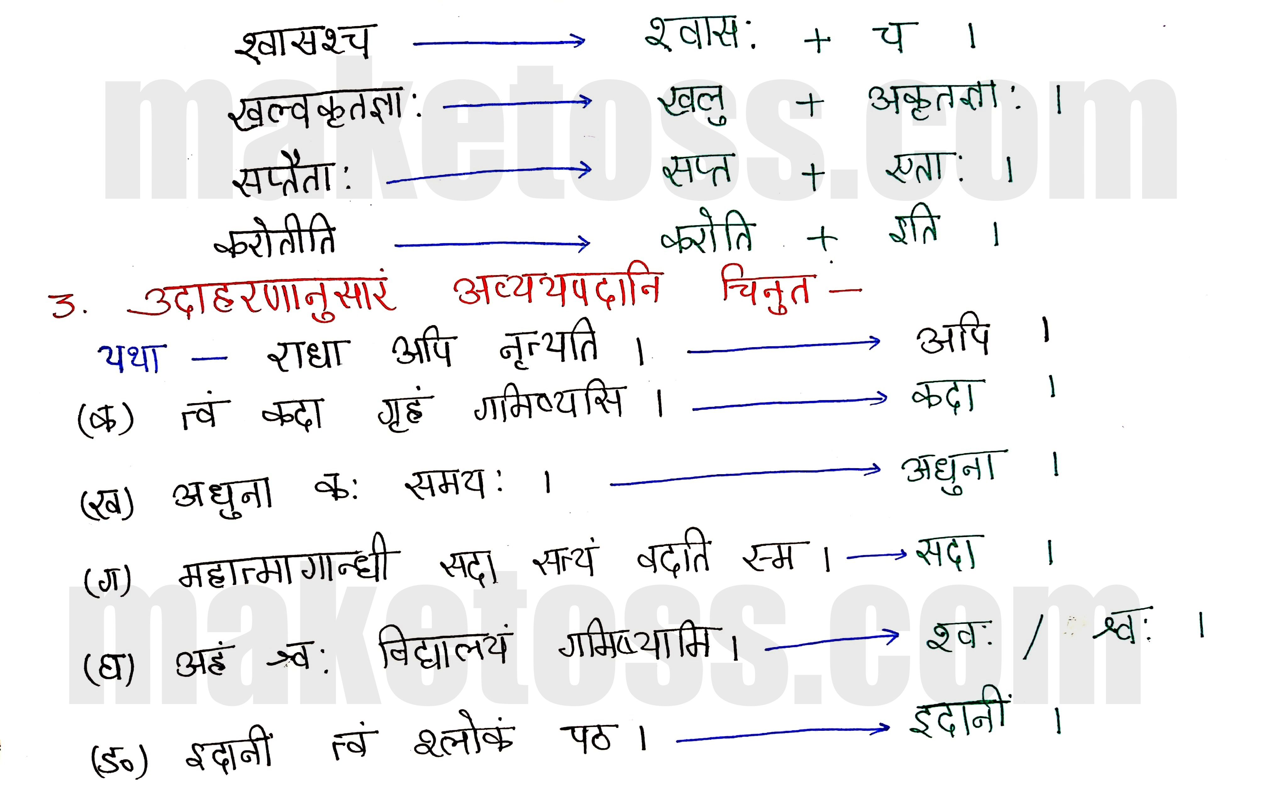 Sanskrit Class 8- Chapter 3-भगवदज्जुकम्- page 2