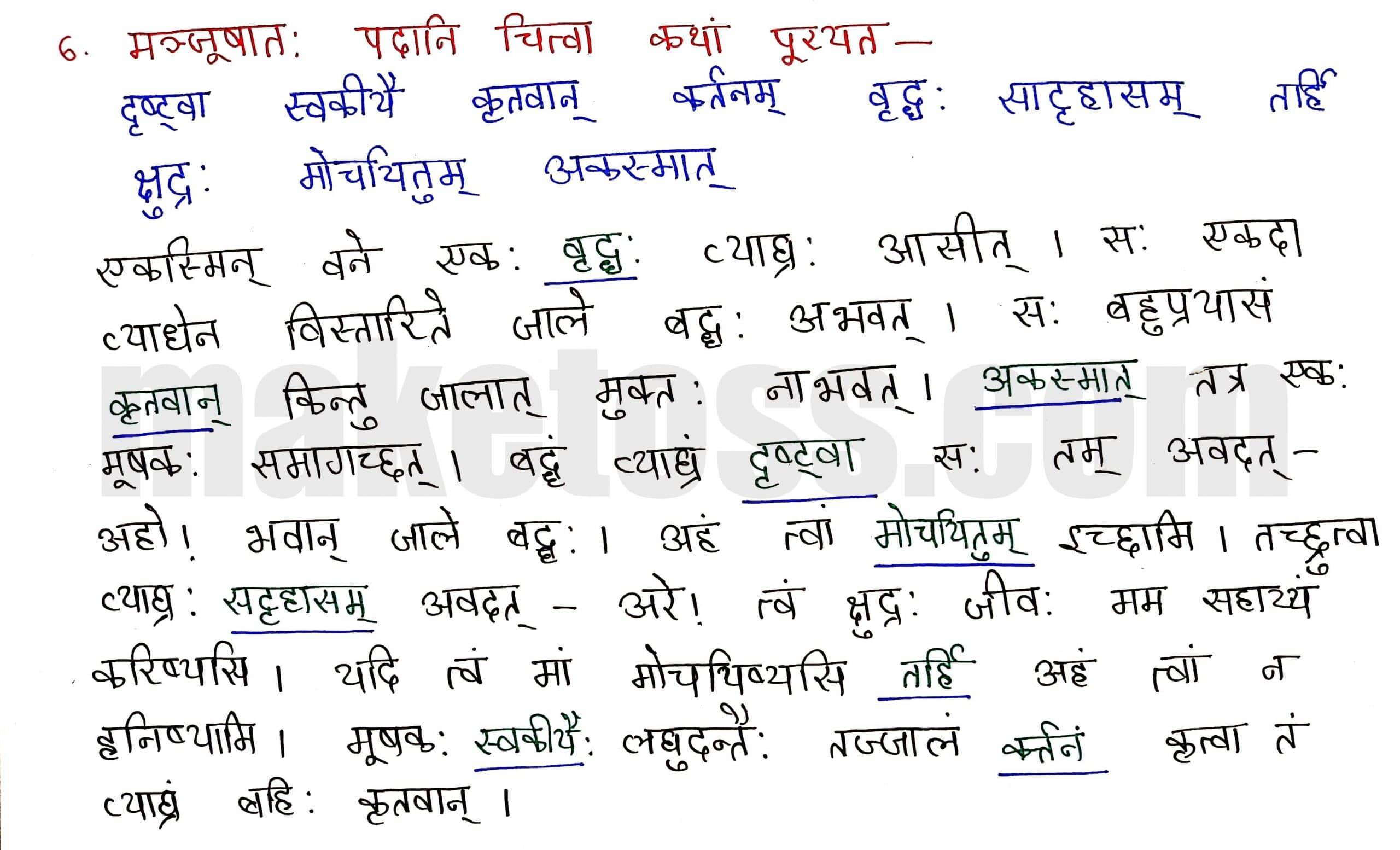 Sanskrit Class 8-chapter 5-धर्मे धमनं पापे पुण्यम् -page 5