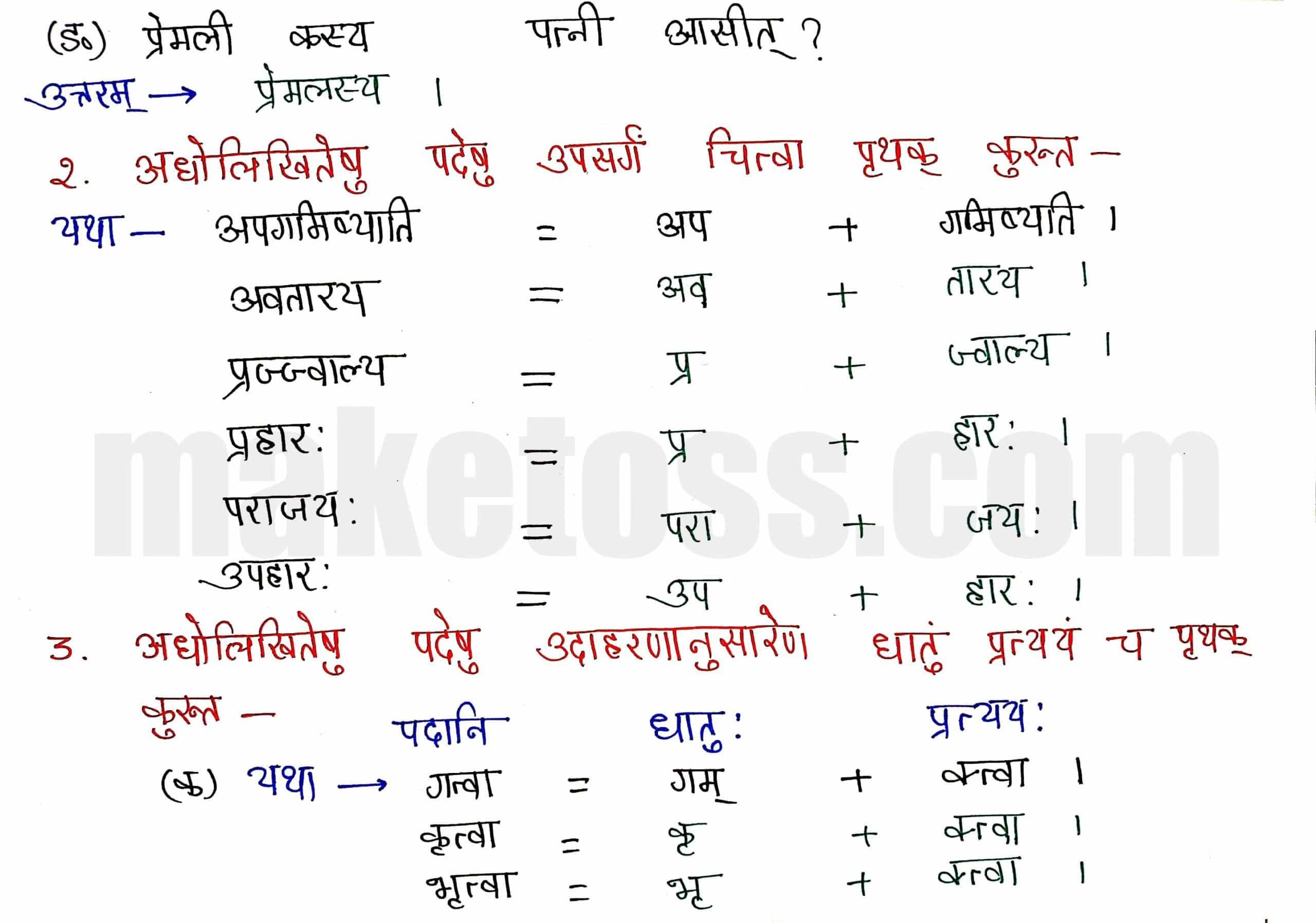 Class 8 Sanskrit chapter 6-प्रेमलस्य प्रेमल्याश्च कथा-page 2