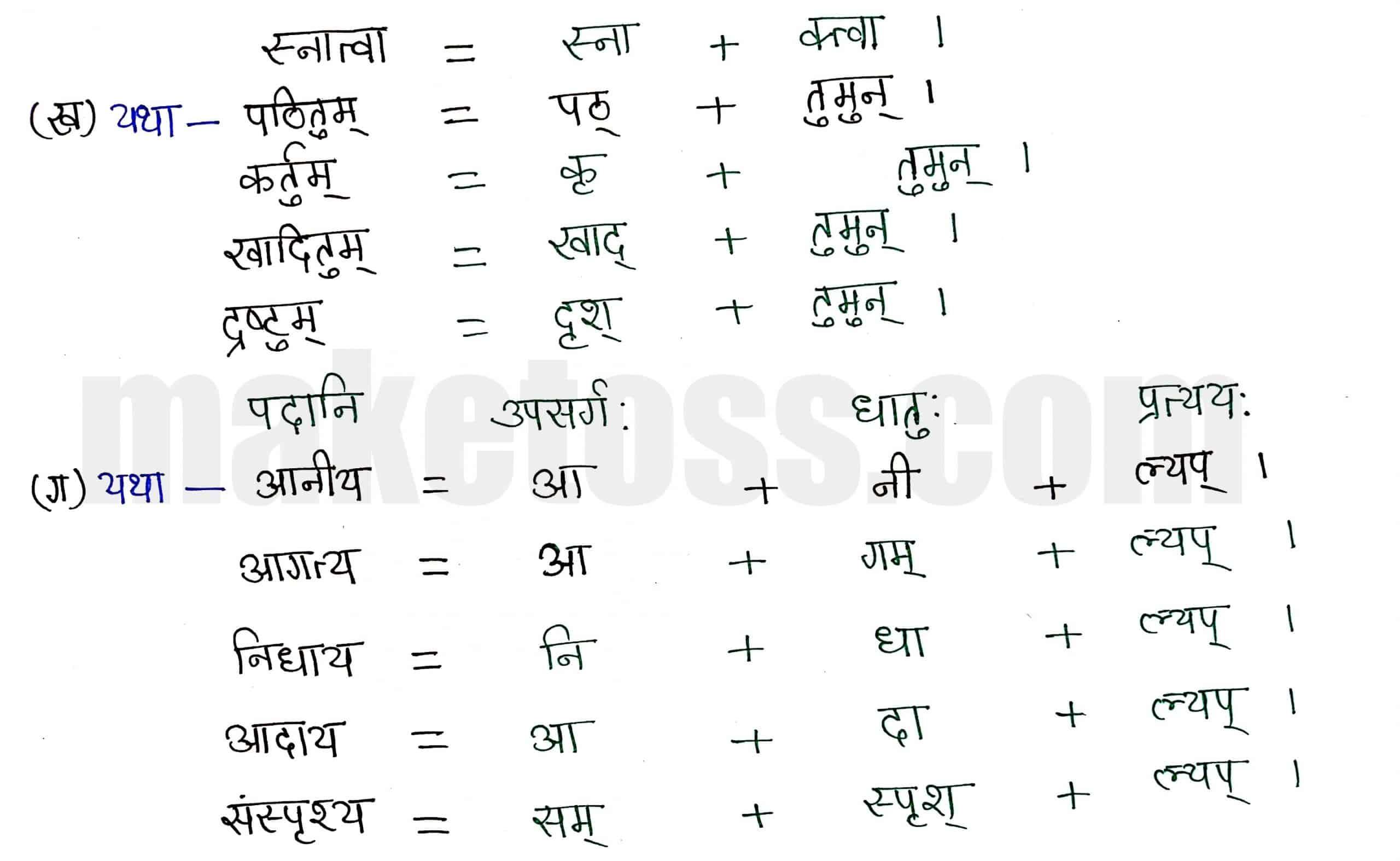 Class 8 Sanskrit chapter 6-प्रेमलस्य प्रेमल्याश्च कथा-page 3