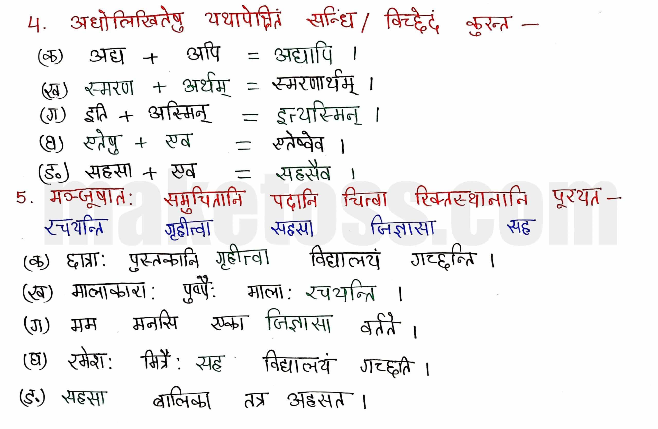 Sanskrit class 8 chapter 8-संसारसागरस्य नायकाः page 4
