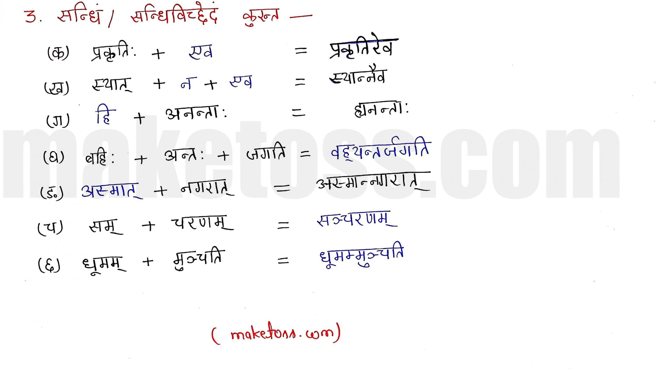Sanskrit class 10 chapter 1-शुचिपर्यावरणम् - Ncert Exercise Solution of Q-3