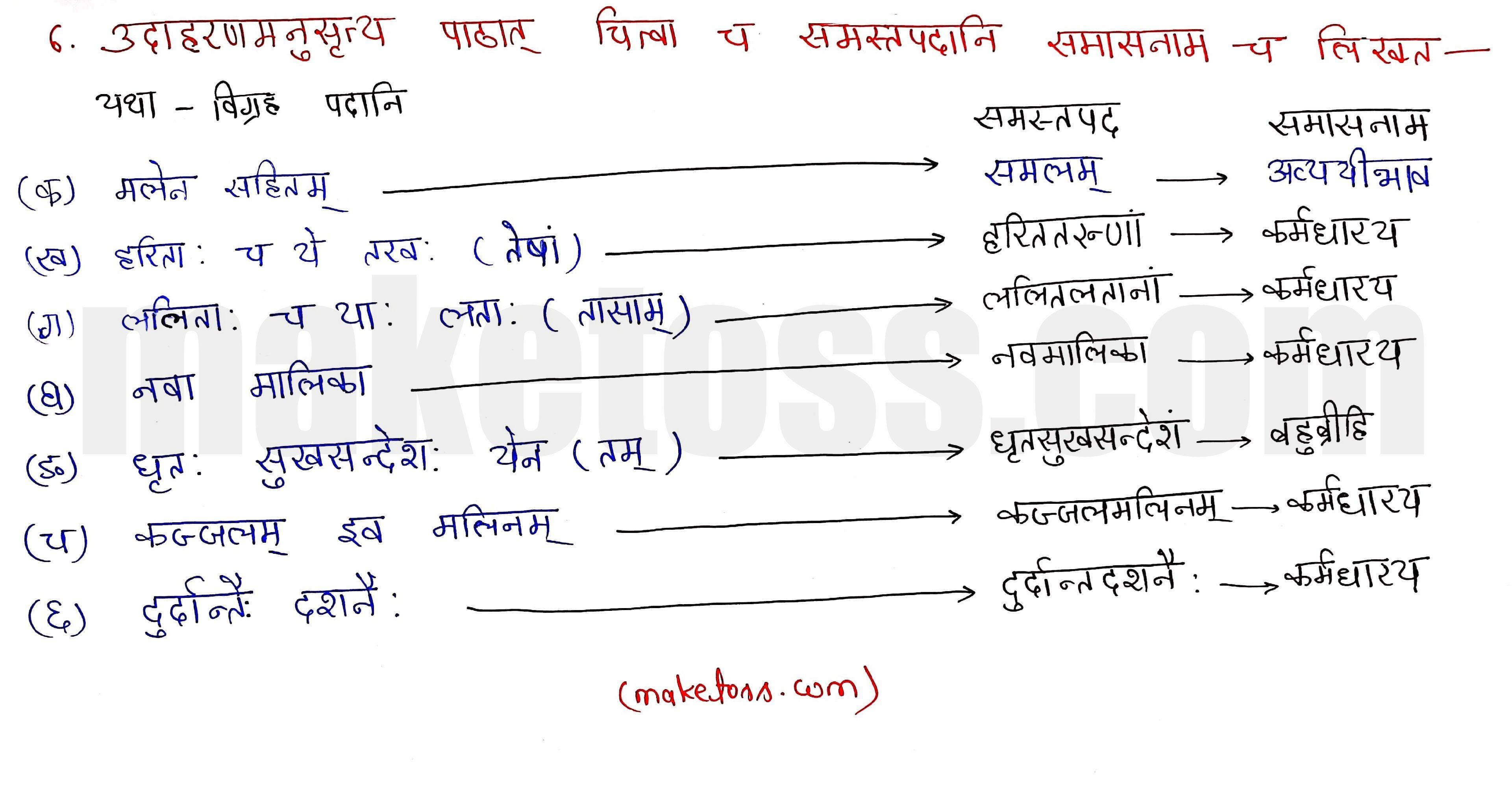 Sanskrit class 10 chapter 1-शुचिपर्यावरणम् - Ncert Exercise Solution of Q-6
