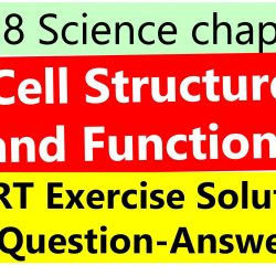 Class 8 Science chapter 8 Cell Structure and Functions NCERT Exercise Solutions ( Question-Answer)