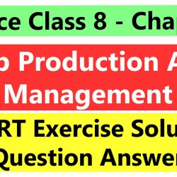 Science Class 8- Chapter 1- Crop Production And Management- NCERT Exercise Solution (Question Answer)