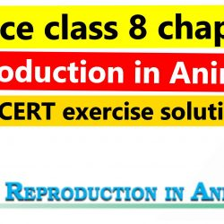 Science class 8 chapter 9 - Reproduction in Animals - NCERT exercise solution