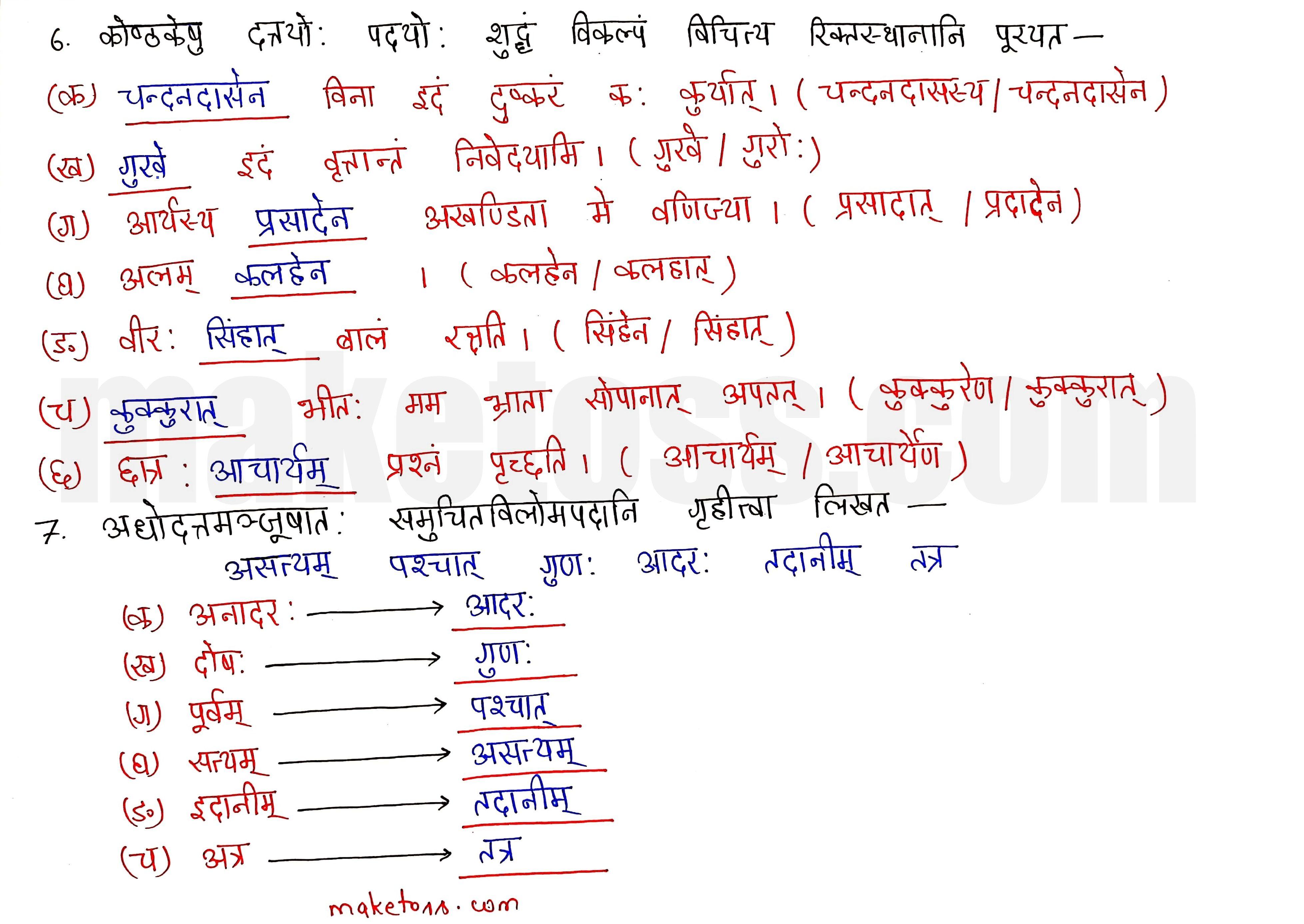 sanskrit class 10 chapter 11 Q.5
