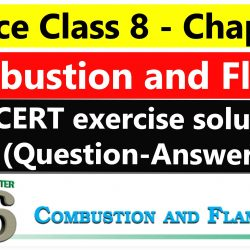 Science Class 8 - Chapter 6- Combustion and Flame - NCERT exercise solution (Question-Answer)