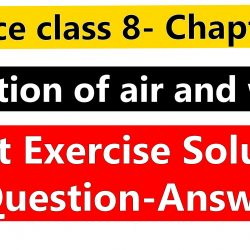 Science class 8- Chapter 18- Pollution of air and water-Ncert Exercise Solution ( Question-Answer)