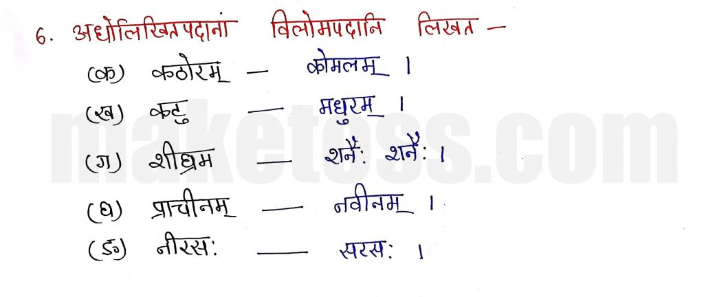 Sanskrit Class 9- Chapter 1- भारतीवसन्तगीतिः - Question 6 with Answer