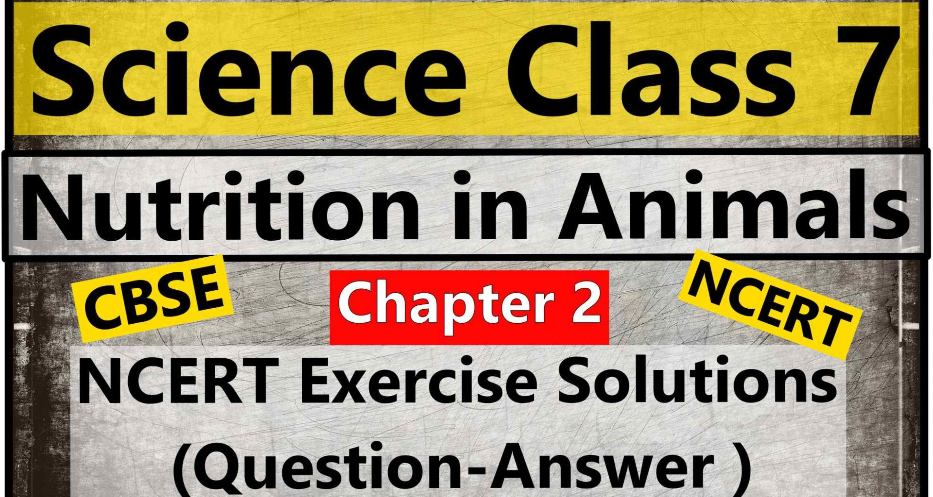 Science Class 7 – Chapter 2 – Nutrition in Animals – NCERT Exercise Solutions ( Question-Answer )