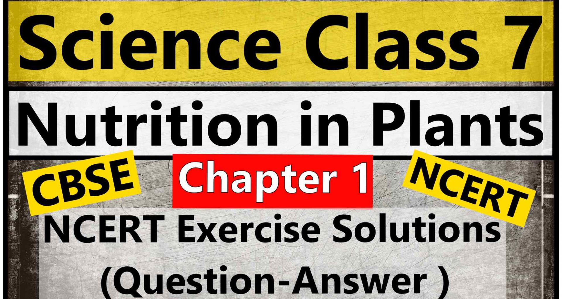 Science Class 7- Chapter 1- Nutrition in Plants- NCERT Exercise Solutions (Question-Answer )