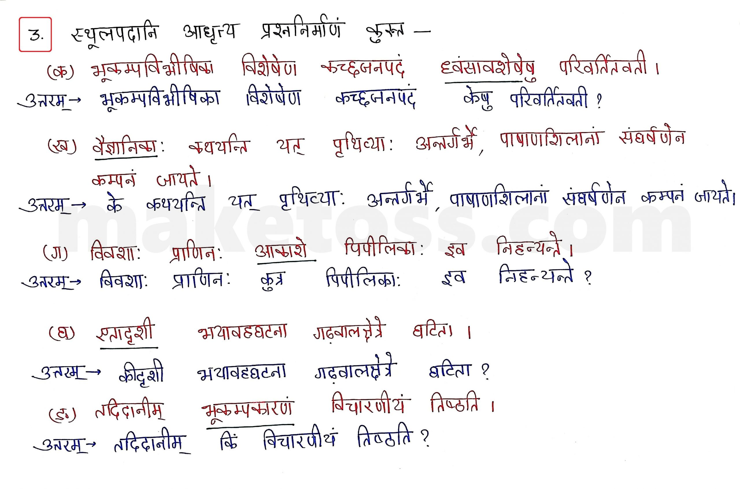 Sanskrit Class 10 - Chapter 10 - भूकंपविभीषिका Question 3 with Answer