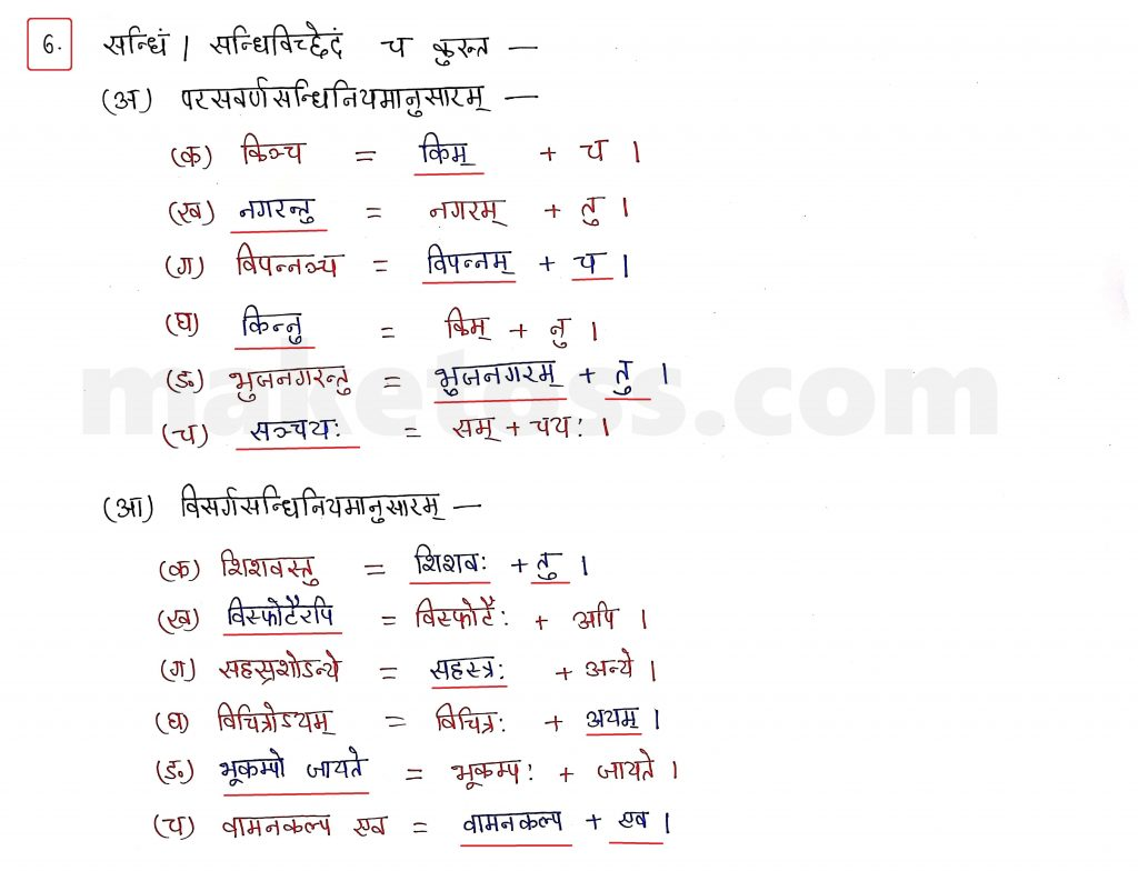 Sanskrit Class 10 - Chapter 10 - भूकंपविभीषिका Question 6 with Answer