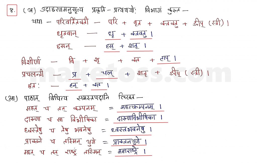 Sanskrit Class 10 - Chapter 10 - भूकंपविभीषिका Question 8 with Answer
