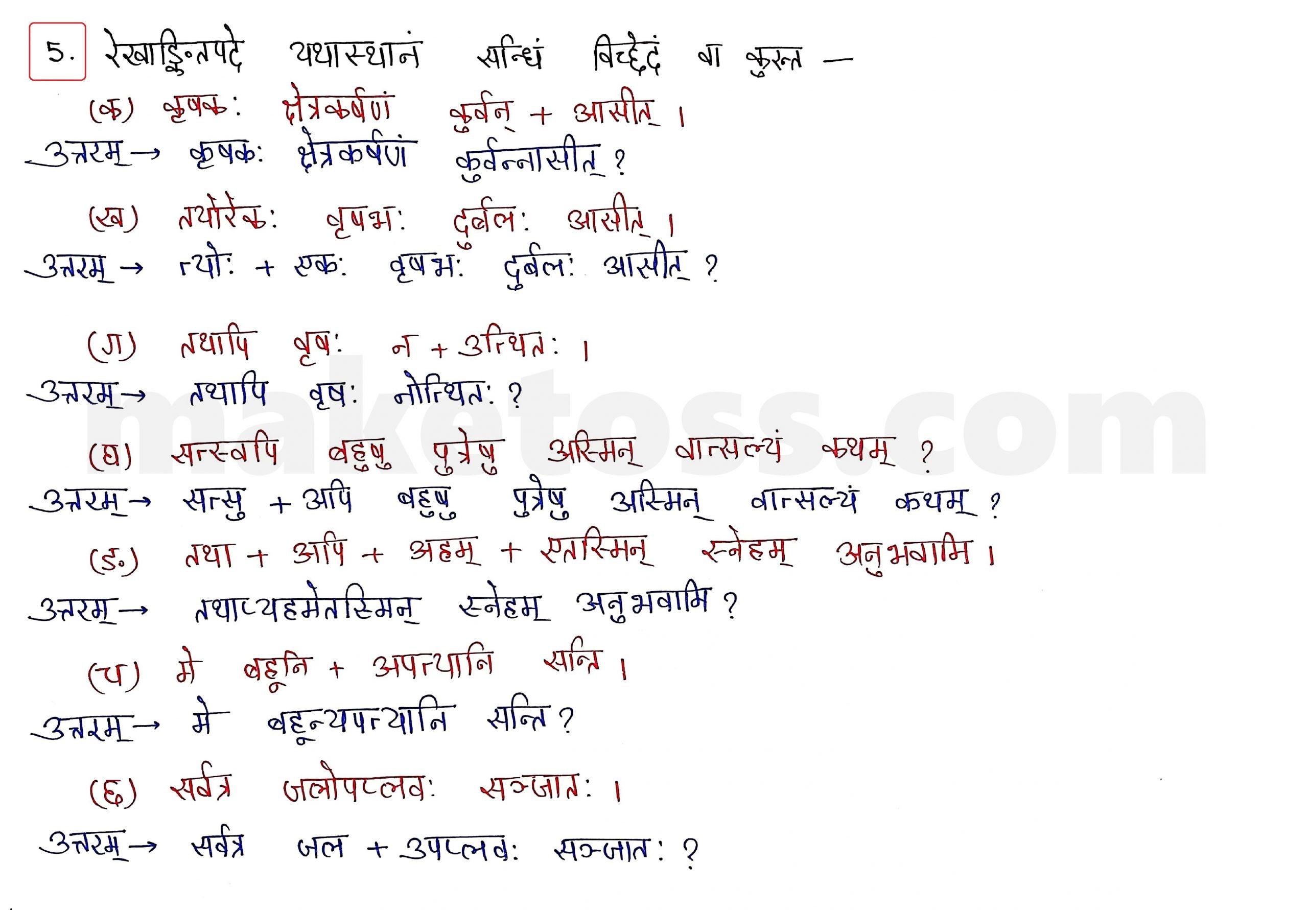 Sanskrit Class 10 - Chapter 5 - जननी तुल्यवत्सला  - Question 5 with Answer