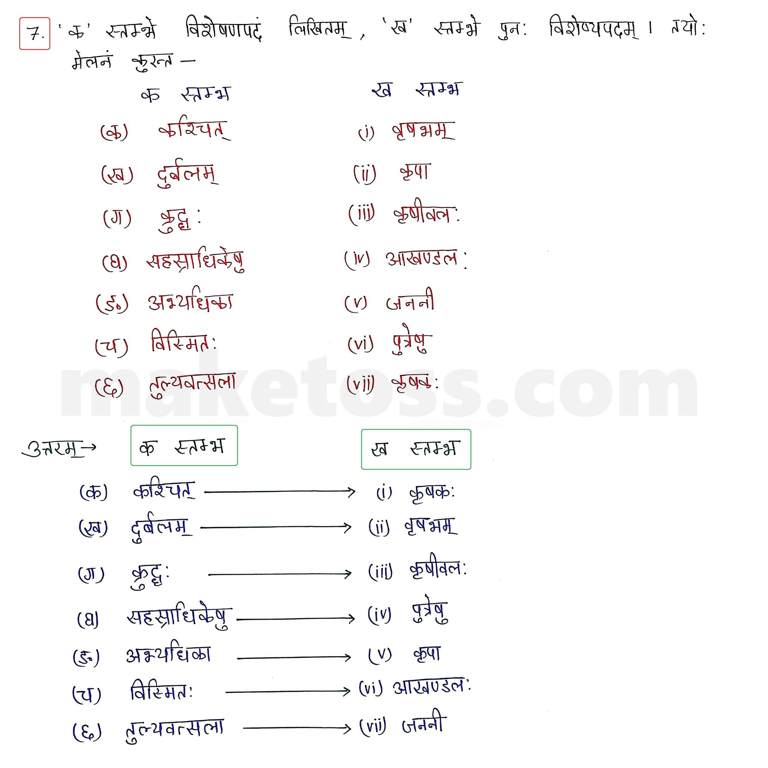 Sanskrit Class 10 - Chapter 5 - जननी तुल्यवत्सला  - Question 7 with Answer