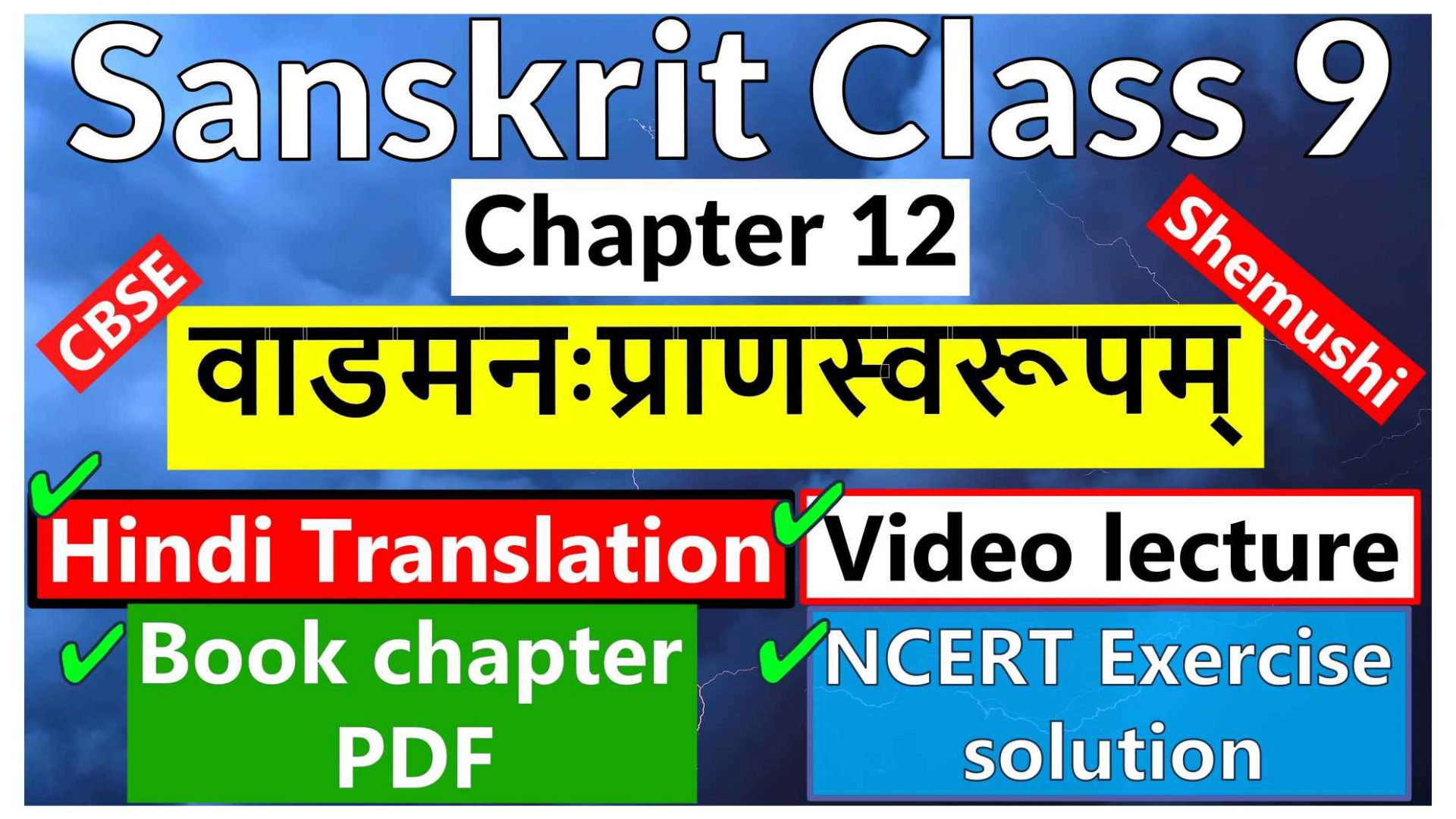 Sanskrit Class 9-Chapter 12 - वाडमनःप्राणस्वरूपम् -Hindi Translation, Video lecture, NCERT Exercise solution (Question-Answer), Book chapter PDF