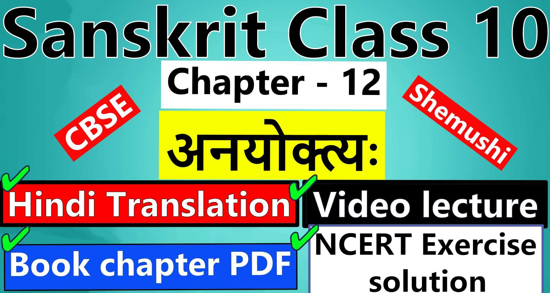 sanskrit-class-10-chapter-12-अनयोक्त्यः-Hindi-Translation-Video-lecture-NCERT-Exercise-Solution-Question-Answer-Book-chapter-PDF