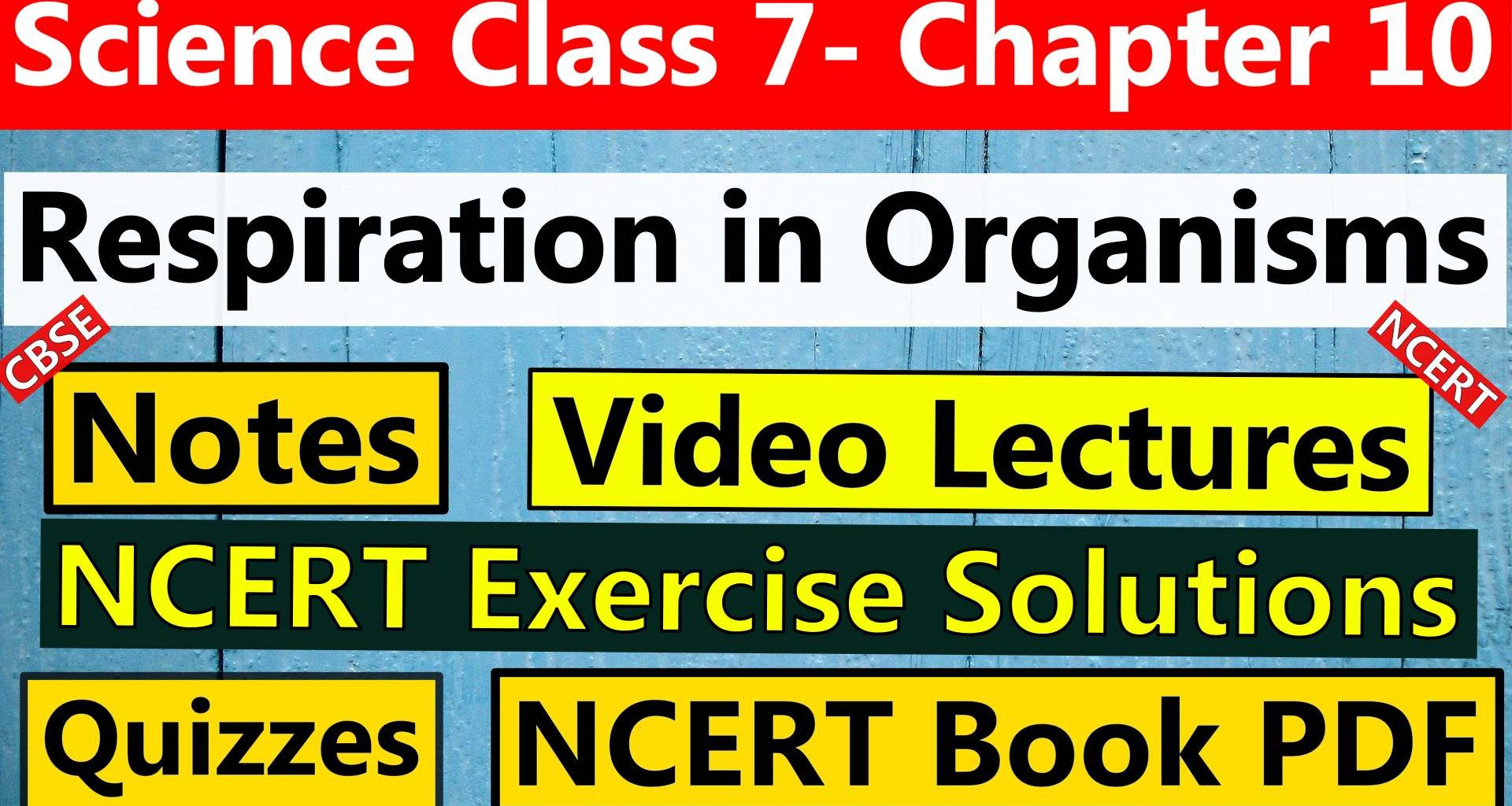 Science Class 7 Chapter 10 Respiration in Organisms